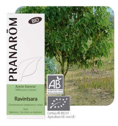 Pranarom Aceite Esencial Ravintsara 10 ml